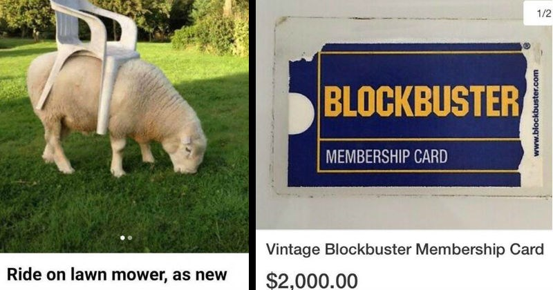 Weird things people tried to sell online | Ride on lawn mower, as new $700 plastic chair on top of a sheep | ebay.com Retail Stores Other Retail Store Ads 1/2 BLOCKBUSTER MEMBERSHIP CARD Vintage Blockbuster Membership Card $2,000.00 Ships United States Buy Now Add cart or Best Offer www.blockbuster.com