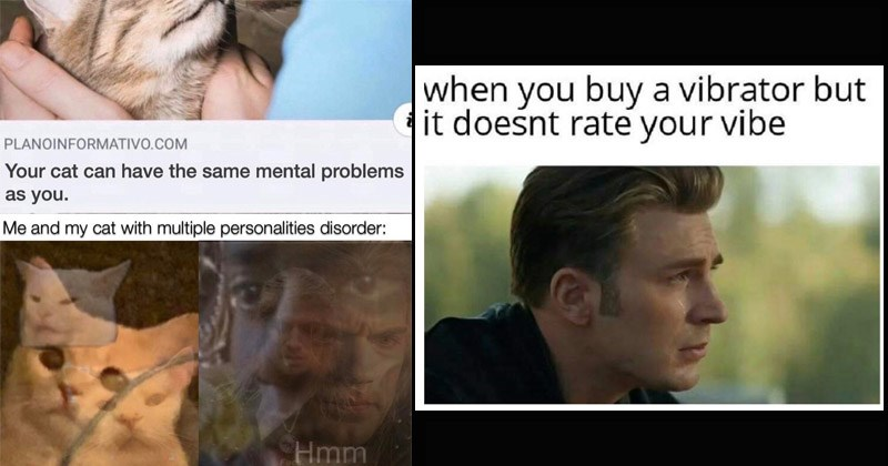 The best dank memes from the past week | PLANOINFORMATIVO.COM cat can have same mental problems as and my cat with multiple personalities disorder: Hmm Fuck Geralt The Witcher | buy vibrator but doesnt rate vibe captain america