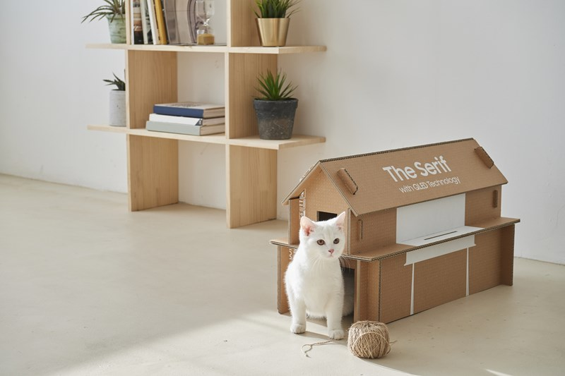 samsung tv cats cardboard houses cute aww cool awesome cat tv eco packaging | tiny white cat kitten coming out of a miniature house made of a box