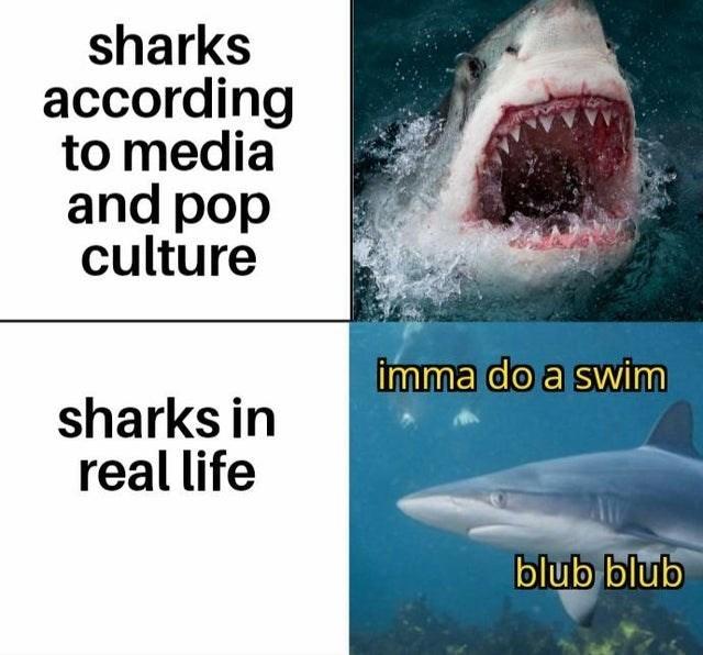 top ten 10 dank memes daily | underwater sea life sharks according media and pop culture imma do swim sharks real life blub blub