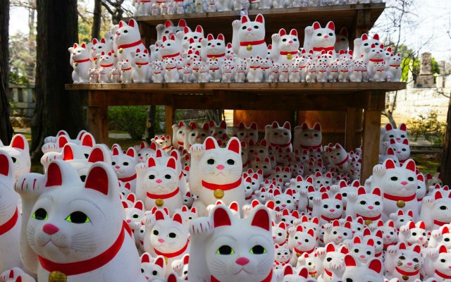The Story Of The Gotokuji Temple In Japan, A Home To a 1,000 Maneki Nekos (Lucky Cats) | shrine with every surface covered entirely with lucky cat figurines