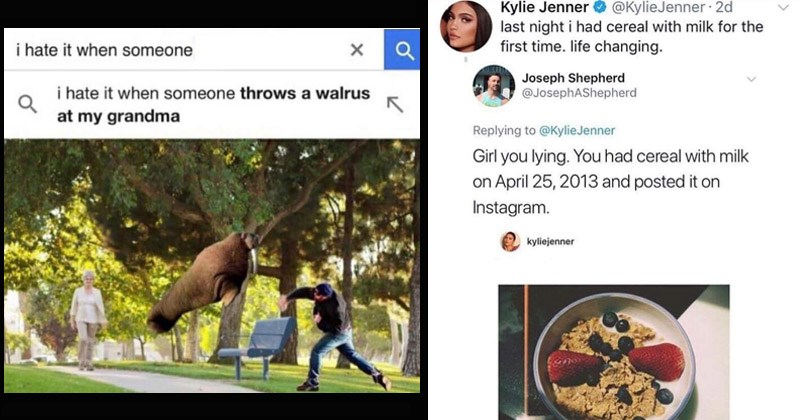 Funny random memes | hate someone hate someone throws walrus at my grandma | Kylie Jenner last night had cereal with milk first time. life changing KylieJenner 2d Joseph Shepherd @JosephAShepherd Replying KylieJenner Girl lying had cereal with milk on April 25, 2013 and posted on Instagram. kyliejenner