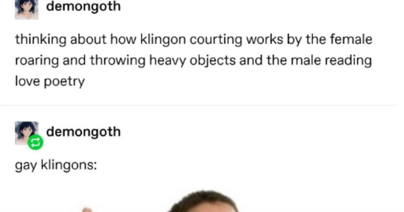 Tumblr thread about mating habits of gay klingons | demongoth thinking about klingon courting works by female roaring and throwing heavy objects and male reading love poetry demongoth gay klingons: