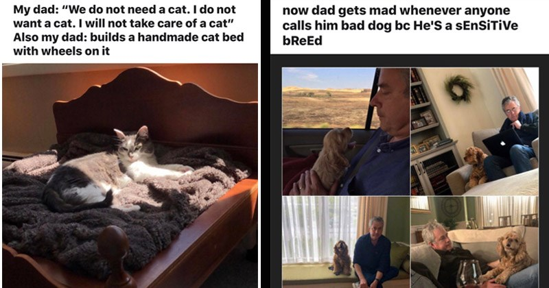 "Funny Reddit posts about dads who didn't want pets originally but now love them | r/dadswhodidnotwantpets My dad do not need cat do not want cat will not take care cat"" Also my dad: builds handmade cat bed with wheels on 