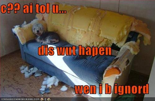 Cheezburger Image 1129436928