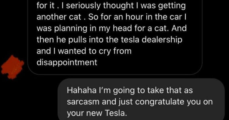 WTF entitled people and their wild demands | So he bought tesla Y, he pre ordered last year He said he had surprise and an hour drive seriously thought getting another cat So an hour car planning my head cat. And then he pulls into tesla dealership and wanted cry disappointment Hahaha l'm going take as sarcasm and just congratulate on new Tesla. No l'm so serious mad took hours get over shouldn't have been brat about but my heart so set on new cat But do love new car Message