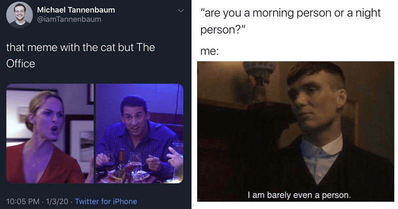 Funny random memes, funny tweets, relatable tweets, relatable memes, the office, office memes | woman yelling at a cat Michael Tannenbaum @iamTannenbaum meme with cat but Office 10:05 PM 1/3/20 Twitter iPhone | are morning person or night person am barely even person.