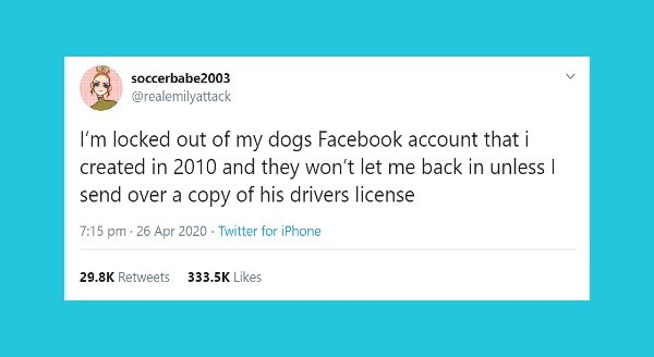 Funniest animal tweets of the week | soccerbabe2003 @realemilyattack locked out my dogs Facebook account created 2010 and they won't let back unless send over copy his drivers license 7:15 pm 26 Apr 2020 Twitter iPhone 29.8K Retweets 333.5K Likes