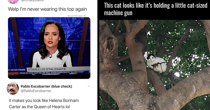 """Funny memes and photos that make you do a double take.   Linsey Davis @LinseyDavis Welp never wearing this top again memeingless.life C NEWS PRIME STIMULUS STALEMATE DEMS BLOCK GOP RELIEF BILL OVER CORPORATE """"SLUSH FUND"""" Pablo Escobarner (blue check PabloEscobarner makes look like Helena Bonham Carter as Queen Hearts lol   This cat looks like 's holding little cat-sized machine gun"""