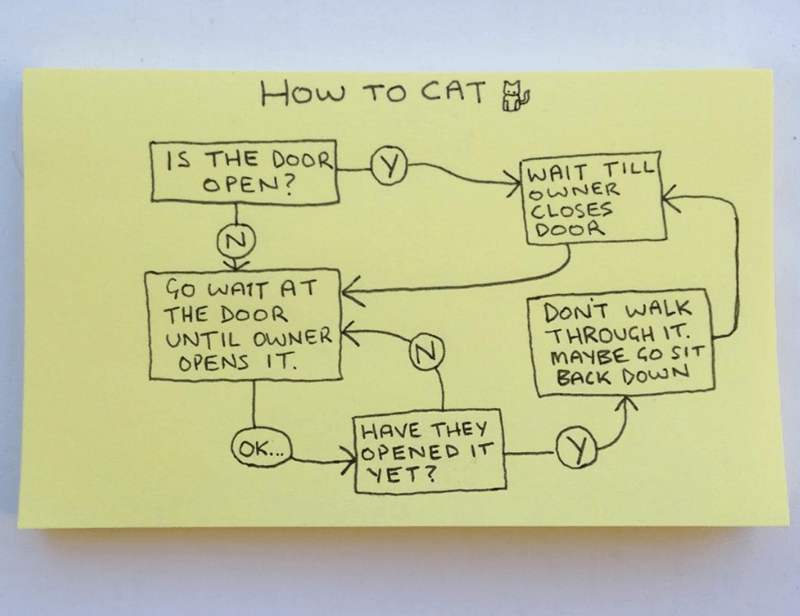 Brutally Honest Handmade Graphs About Animals | CAT M IS DOOR OPEN? WAIT TILL OWNER CLOSES DOOR Go WAIT AT DOOR UNTIL OWNER OPENS DONT WALK THROUGH MAYBE GO SIT BACK DOWN HAVE THEY OPENED YET? OK