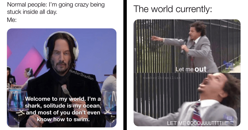 quarantine memes, lockdown memes, funny memes | Keanu Reeves Normal people going crazy being stuck inside all day numberlbrazilian Welcome my world shark, solitude is my ocean, Xand most don't even know swim. | world currently: Let out Jadufwalin numberlbrazilian LET O0OOUUUUTTTT Eric Andre show