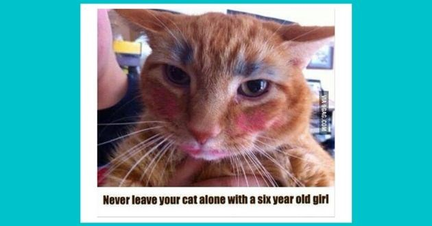 cute pictures kids smile funny children | Never leave cat alone with Six year old girl VIA 9GAG.COM orange cat with badly applied makeup blush lipstick and blue eye shadow