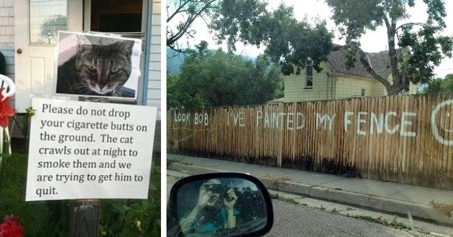 funny neighbors boring pictures imgur Reddit quirky weird | Neighbor's cat got my newly adopted stray cat pregnant and sent this. child support cat food bag on porch