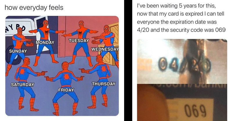 Funny random memes | spider man @zahraloum everyday feels AYPO TUESDAY MONDAY WEDNESDAY SUNDAY SATURDAY THURSDAY FRIDAY adam..crea | been waiting 5 years this, now my card is expired I can tell everyone expiration date 4/20 and security code 069 044 /20 069