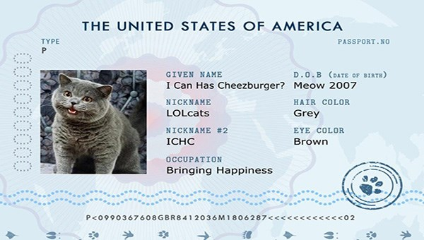 pet passport builder how to use | THE UNITED STATES GIVEN NAYE OF AMERICA TYPE I Can Has Cheezburger? NICKNAME LOLcats NICKNAME ICHC OCCUPATION Bringing Happiness PASSPORT. NO D. O. B (oatt OF Meow 2007 HAIR COLOR EYE COLOR Brown