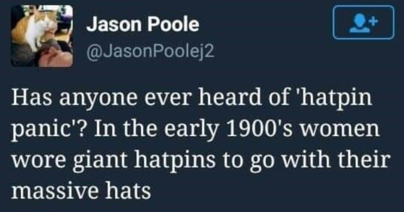 Twitter thread breaks down the madness of the hatpin panic in the 1900s | Jason Poole @JasonPoolej2 Has anyone ever heard hatpin panic early 1900's women wore giant hatpins go with their massive hats