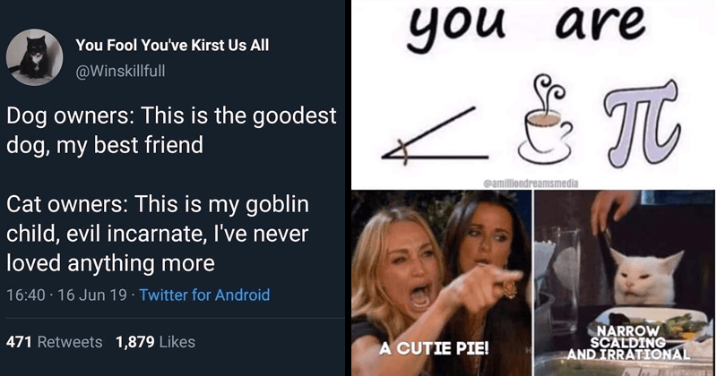 Funny random memes, dank memes, relatable memes | Fool Kirst Us All @Winskillfull Dog owners: This is goodest dog, my best friend Cat owners: This is my goblin child, evil incarnate never loved anything more | woman yelling at cat are amiliondreamsmedia CUTIE PIE! NARROW SCALDING AND IRRATIONAL