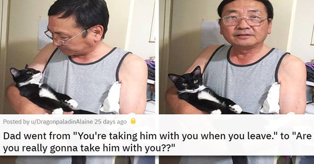 men dads cats dogs aww cute wholesome adorable animals | Dad went from You're taking him with you when you leave. to Are you really gonna take him with you?? man cradling a cat in his arms