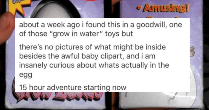 """A toy egg cracks, and then a weird monster baby thing pops out   Grow Babies Play Vistns Ages 5. Criçinal Size Amusing! Funnyi eNovel about week ago found this goodwill, one those """"grow water"""" toys but there's no pictures might be inside besides awful baby clipart, and am insanely curious about whats actually egg 15 hour adventure starting now"""