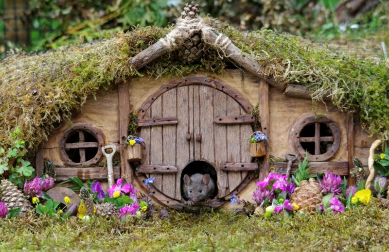 hobbit mice photographer shire hobbiton lord of the rings enchanting photographer beautiful art | charming adorable hobbit hall shire with a round door like in the baggins house and grass growing on the roof