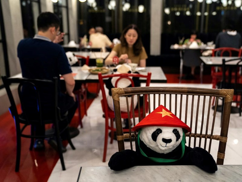 Vietnamese Restaurant Placed Stuffed Pandas To Keep Their Diners Company | panda bear plushie toy in a pointy hat sitting on a chair in a full restaurant