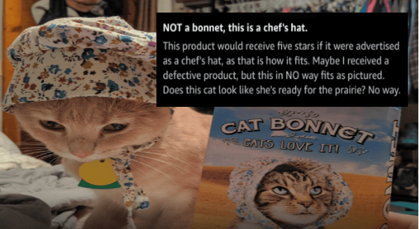 Reviews For Cat Bonnets | CATS LOVE IT NOT bonnet, this is chef's hat. This product would receive five stars if were advertised as chef's hat, as is fits. Maybe received defective product, but this NO way fits as pictured. Does this cat look like she's ready prairie? No way quality is good, and stitching is well done; however does not fit as advertised