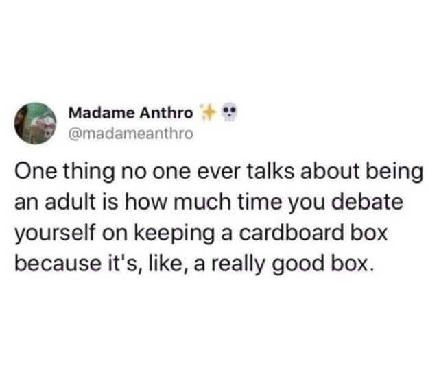 collection of funny white people tweets   Animal - Madame Anthro @madameanthro One thing no one ever talks about being an adult is much time debate yourself on keeping cardboard box because 's, like really good box.