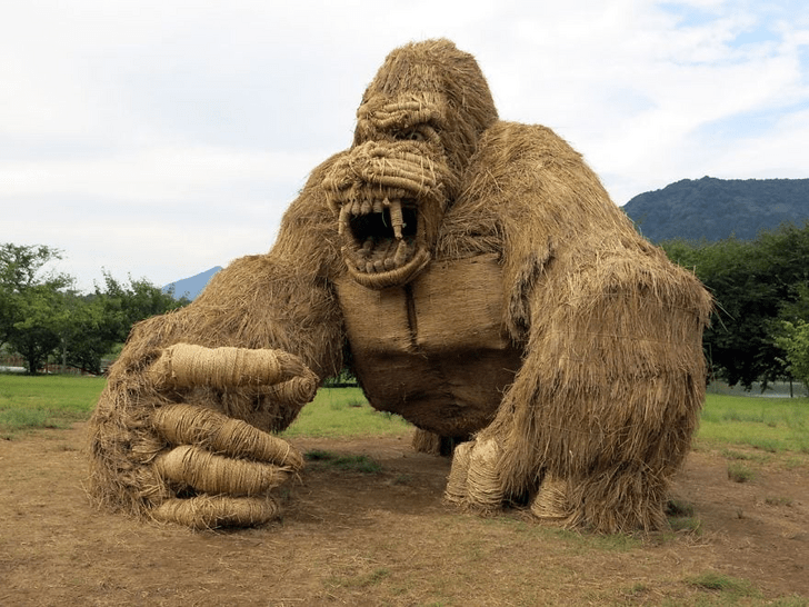 japan sculpture animals straw rice awesome cool | huge sculpture of a snarling gorilla made of wara leftover rice straw standing in a field