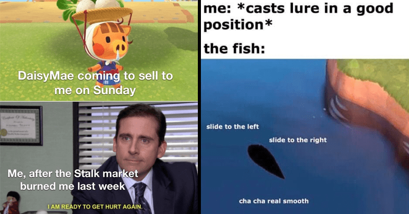 Funny memes about Animal Crossing: new horizons for nintendo switch, gaming memes, dank memes, relatable memes, selling turnips, tom nook | DaisyMae coming sell on Sunday Scerr after Stalk market burned last week AM READY GET HURT AG made with mematic | casts lure good position fish: slide left slide right cha cha real smooth