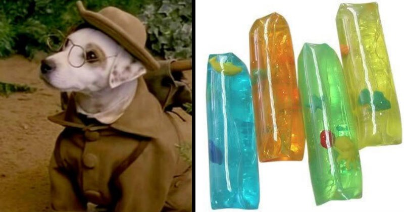 90s Nostalgia toys, tv shows and school supplies | Wishbone the dog dressed like a detective in a coat and hat and wearing glasses | clear tubes of jelly with fake fish floating inside