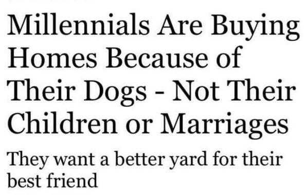 Wholesome animal memes | Millennials Are Buying Homes Because Their Dogs Not Their Children or Marriages They want better yard their best friend