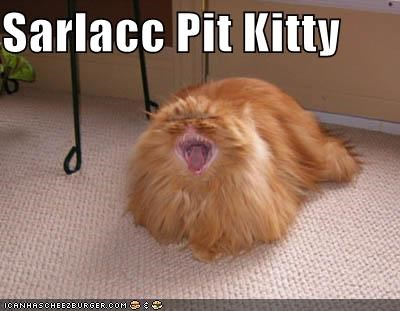 Sarlacc Pit Kitty - Cheezburger - Funny Memes | Funny Pictures