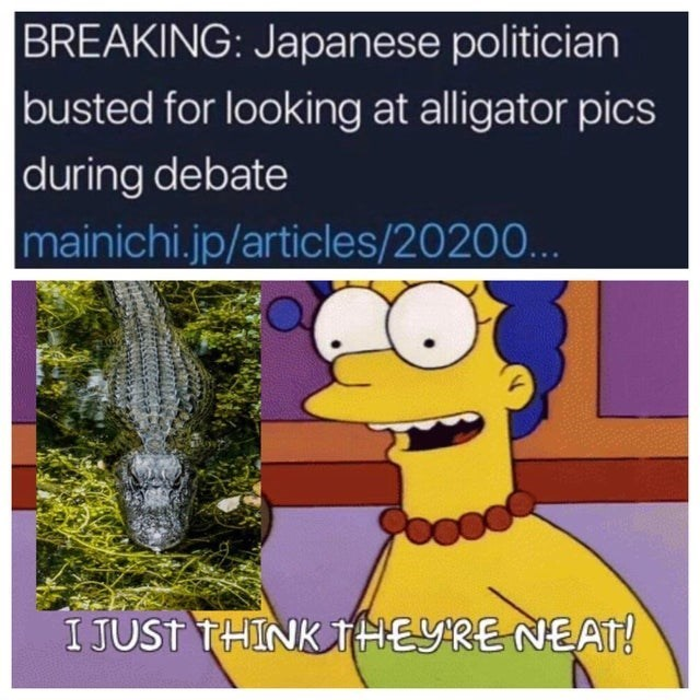 top ten 10 memes daily | Marge Simpson BREAKING: Japanese politician busted looking at alligator pics during debate mainichi.jp/articles/20200 JUST THINK THEYRE NEAT!