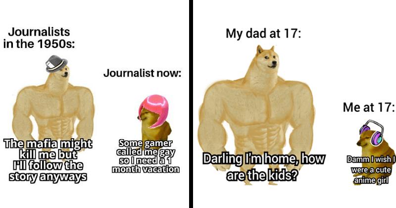 Funny memes, dank memes, swole doge vs. cheems memes, shiba inus, dog memes, ironic memes, joker memes