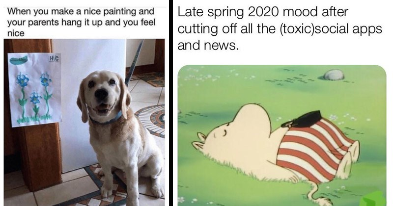 Funny and cute wholesome memes | make nice painting and parents hang up and feel nice HC dog looking proud next to a drawing of flowers | Late spring 2020 mood after cutting off all toxic)social apps and news. mother moomin sleeping in grass