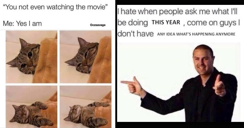 Funny random memes | cat falling asleep under a blanket not even watching movie Yes am Oczsavage | I hate people ask l'l be doing THIS YEAR Come on guys don't have aNY IDEA 'S HAPPENING ANYMORE