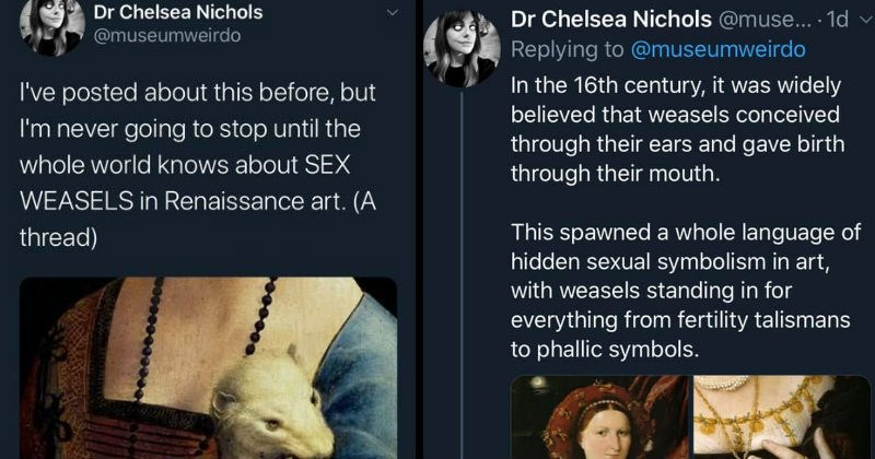 Twitter thread about Sex Weasel symbolism in renaissance art | Chelsea Nichols @museumweirdo posted about this before, but never going stop until whole world knows about SEX WEASELS Renaissance art thread) | 16th century widely believed weasels conceived through their ears and gave birth through their mouth. This spawned whole language hidden sexual symbolism art, with weasels standing everything fertility talismans phallic symbols. 21 L788 O 1,560 Doo