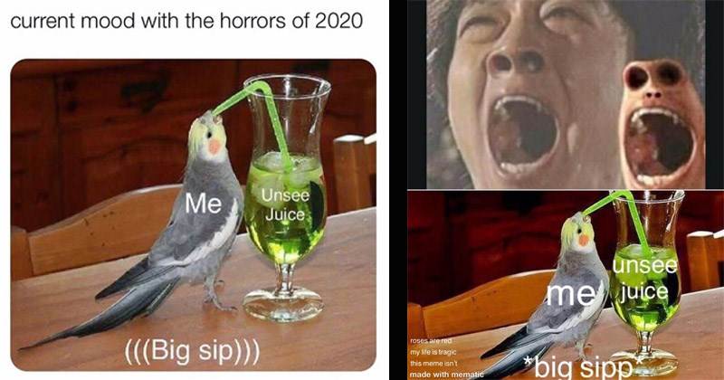 Funny dank memes entitled 'Unsee Juice' parrot drinking cocktail through a straw | current mood with horrors 2020 Unsee Juice Big sip | unsee mejuice roses are red my life is tragic big sipp this meme isn't made with mematic