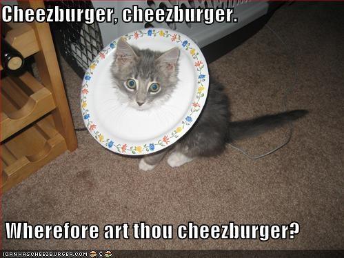 Cheezburger Image 1159283456