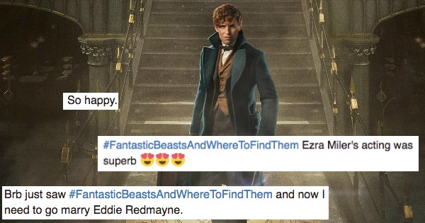 Harry Potter fantastic beasts and where to find them - 1160709