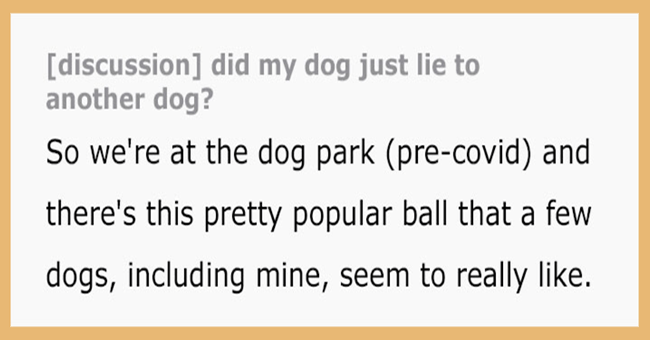"Dog Owner Caught His Pup ""Lying"" To Another Dog At The Park 