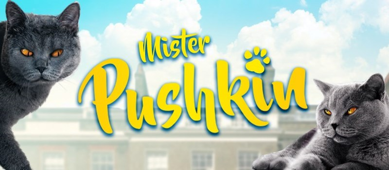 The Mischievously Funny Tales Of Mister Pushkin, The Cheeky Cat | blue russian british shorthair cat with grey fur and orange eyes