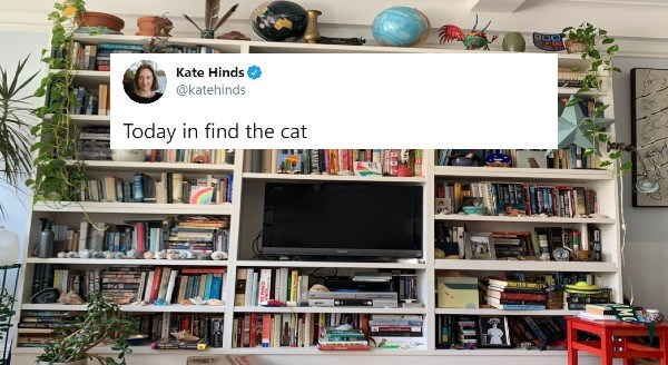 Spot the cat game | Kate Hinds @katehinds Today find cat MO MANHATTAN WECN TV wall mounted TV console cabinet filled with books