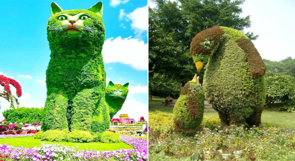 Beautiful Animal Creations From Topiary Gardens Around The World | huge hedge bush shaped like a cat with another cat peeking from around it | cute nature green sculpture mother penguin leaning down toward her baby chick