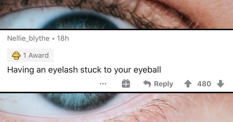 People describe minor nuisances that drive them insane   Nellie_blythe 18h 1 Award Having an eyelash stuck eyeball Reply 480