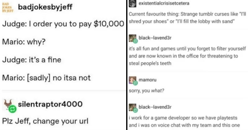 "A collection of funny and bizarre Tumblr nuggets | BAD JOKES badjokesbyjeff Judge order pay $10,000 Mario: why? Judge s fine Mario sadly] no itsa not silentraptor4000 Plz Jeff, change url | existentialcrisisetcetera Current favourite thing: Strange tumblr curses like ""Ill shred shoes"" or fill lobby with sand"" black--lavend3r 's all fun and games until forget filter yourself and are now known office threatening steal people's teeth mamoru sorry black--lavend3r work game developer so have playtes"