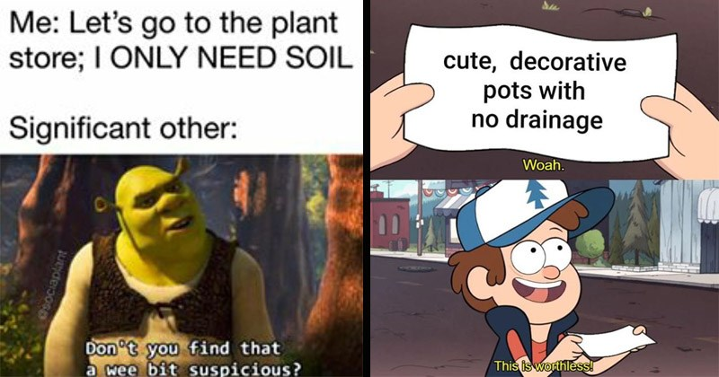 Funny memes about plants | Let's go plant store ONLY NEED SOIL Significant other: Don't find wee bit suspicious? Osociaplant Shrek | cute, decorative pots with no drainage Woah. This is worthless! Gravity Falls
