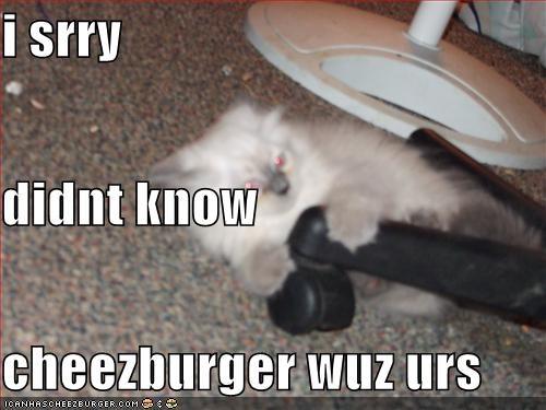 Cheezburger Image 1171555584