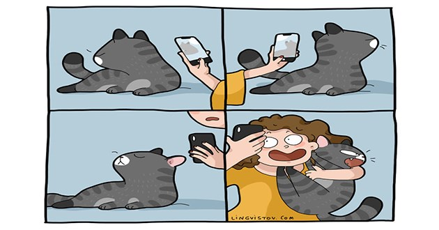 cat comics funny lol art cats animals artist relatable cute aww adorable illustrations | comic illustration of a person trying to take pics of a cat who turns away and refuses to look at the camera