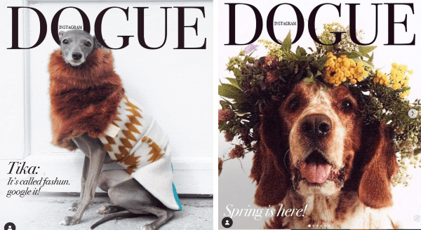 "New Adorably Stylish Trend: ""Douge"" Covers 